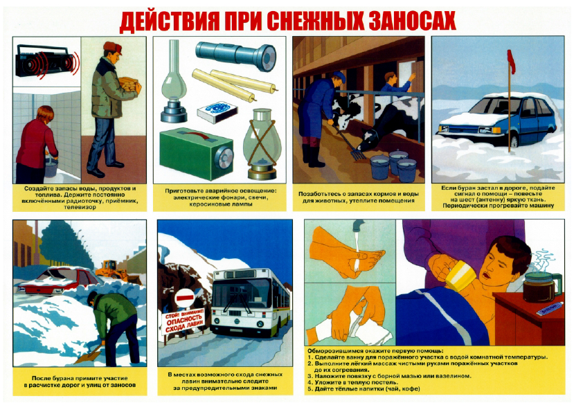 Плакаты_8.png