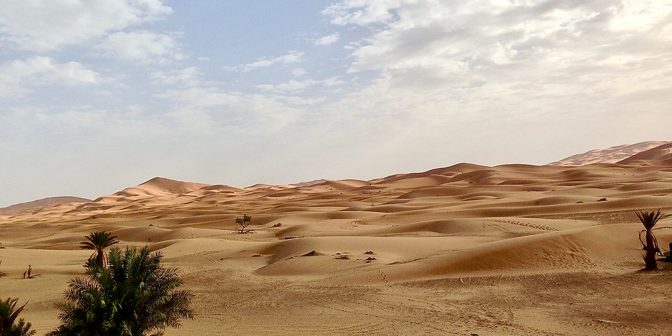 Rose Festival Desert Yoga Retreat