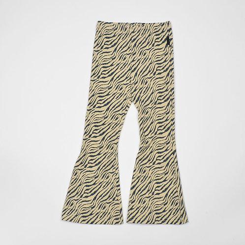 Flared zebra   Nolabels