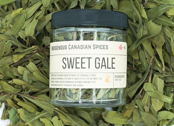 Sweet Gale