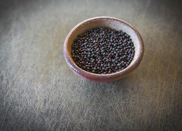 Mustard Seed (Black & Yellow)