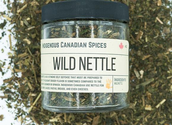 Wild Nettle