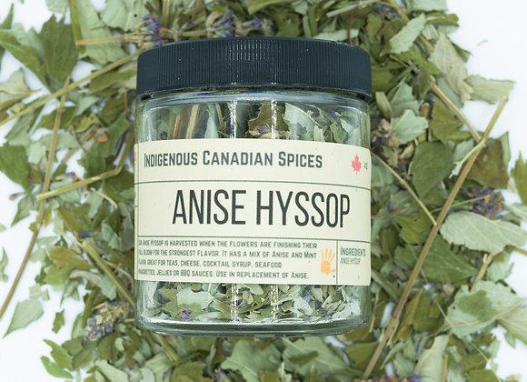 Anise Hyssop
