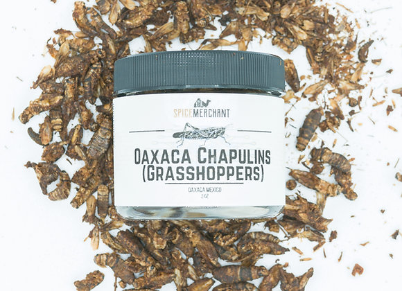 Oaxaca Chapulin (Grasshoppers)