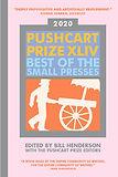 pushcart prize 2020.jpg