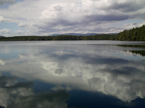 Caledonian Forest Lake