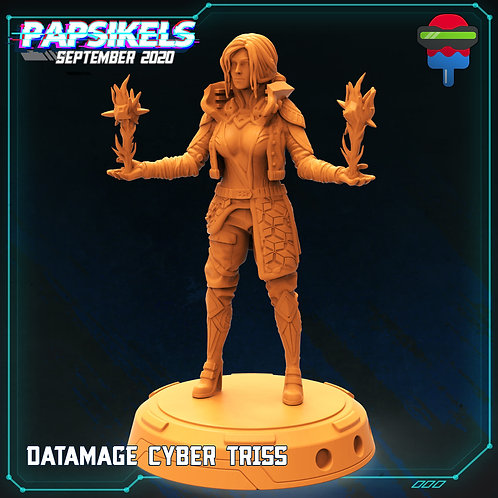 DATAMAGE CYBER TRISS