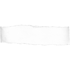 torn-paper-transparent-png-1.png