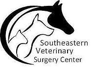 southeastersurgery_edited.jpg