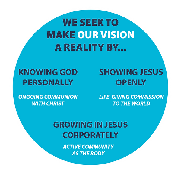 Our Vision LSF.png