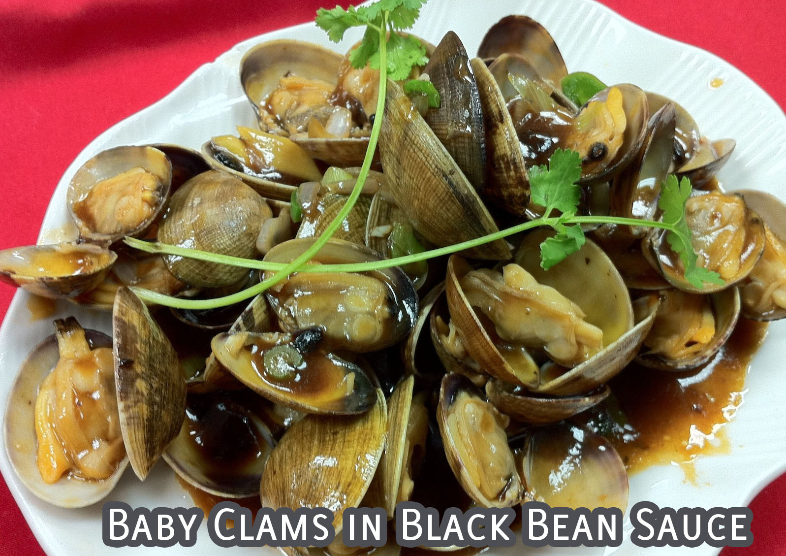 Baby Clams in Black Bean Sauce