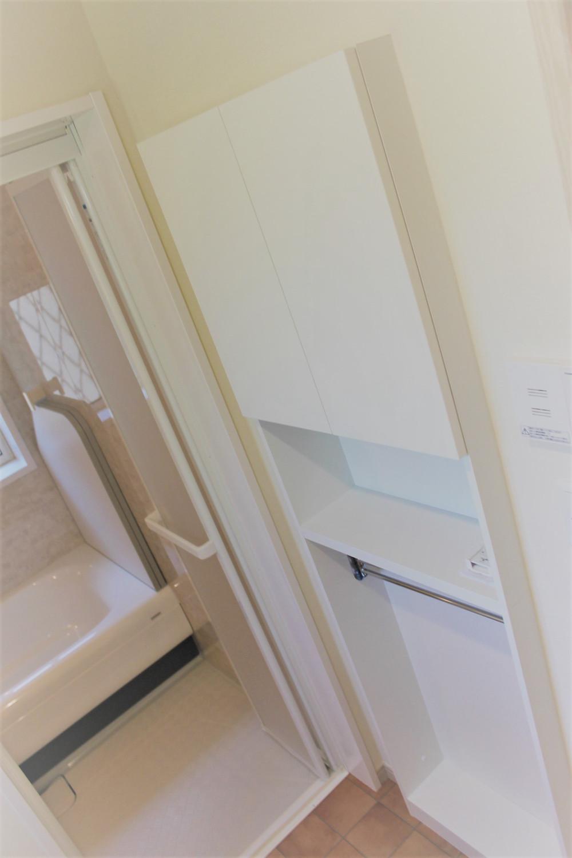 洗剤やタオルなどの収納棚やバスタオル掛けを装備した脱衣所