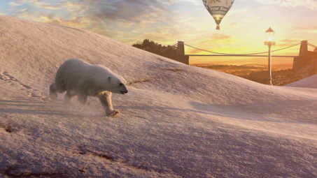 Polar Bear Windows