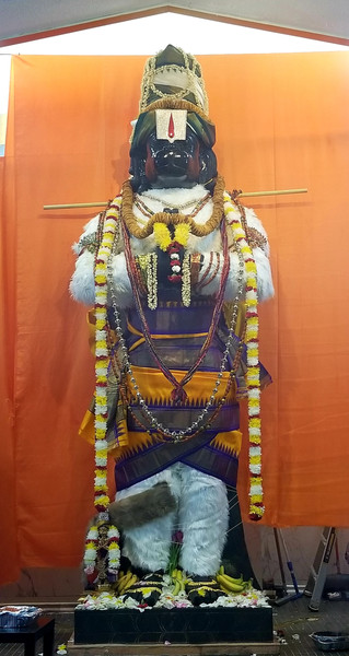 Sri Bhaktha Hanuman in white fur