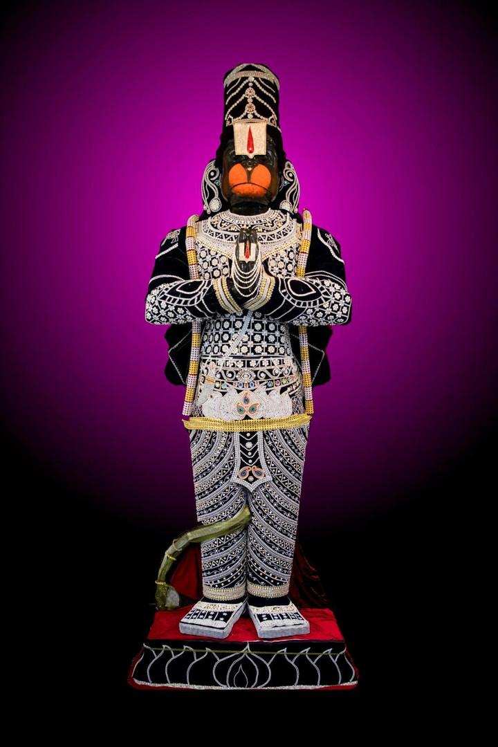Muthangi Seva 2019 (Pearl Studded Vastram)