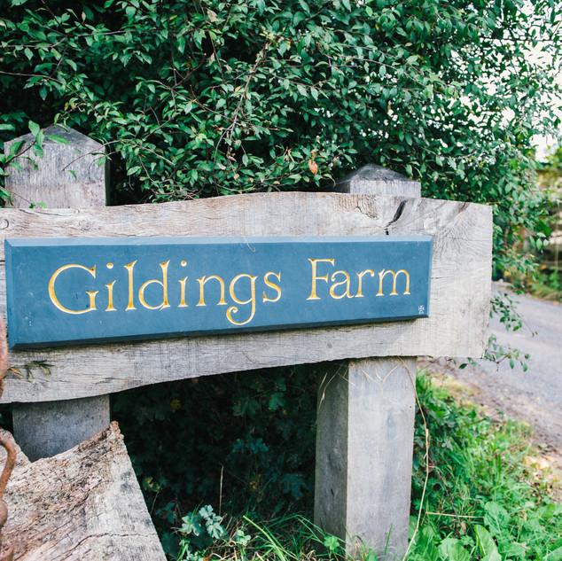 Gildings-Barn-Wedding-.-CA-.-Allison-Dew
