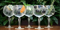 Gin Tasting 1.png