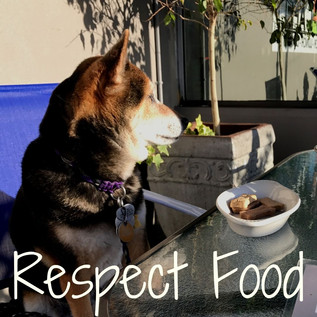 respect food.jpg
