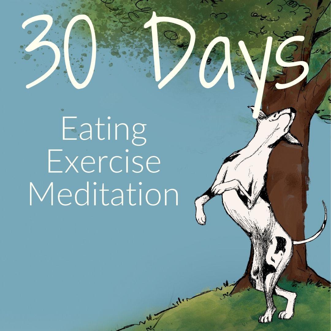 30 Days of Muchness
