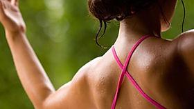 Body Wisdom - Chest & Shoulders