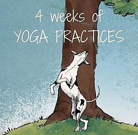 30 Days Yoga.jpg