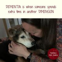 The Dimensions of Dementia & the Brain