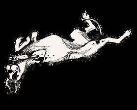 Mozi Great Dane Animated Black White Rolling Around