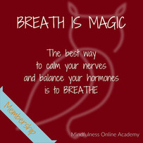 MINDFUL BREATHING - How to Breathe through Sensitivity Feels