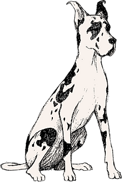 Mozi Great Dane Animated Sitting