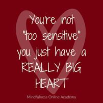 Sensitivity is a Super Power - Preface