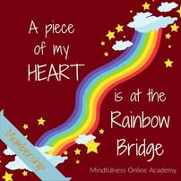 A Rainbow Bridge Ritual & Meditation for Your Pet