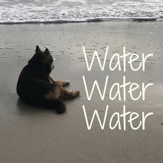 waterwaterwater.jpg