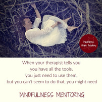 When Therapy Works - But not Enough - Mindfulness is Toolbox Training