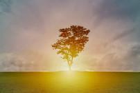Sneak Peek - Out of Darkness Mindfulness & Meditation Series - week 1