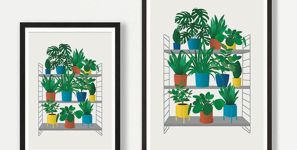 House Plant unframed print
