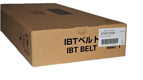 Xerox 675K72181 IBT Belt