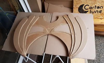 Assemblage plaque en carton