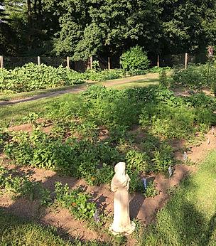 garden coming.jpg