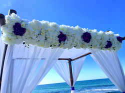 john_laws_wedding_burleigh_heads.JPG