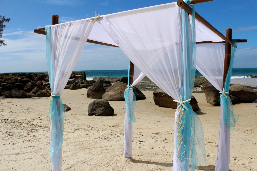 bamboo_wedding_arbor_starfish_aqua_blue.jpg