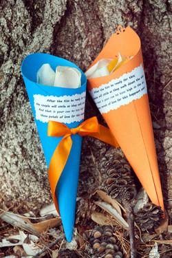 Petal Toss Paper Cones.jpg