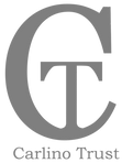 Logo_CT_grey_cropped_edited.png