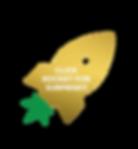 Rocket_Logo_gold_surprise.png