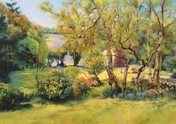 Dartmoor Garden