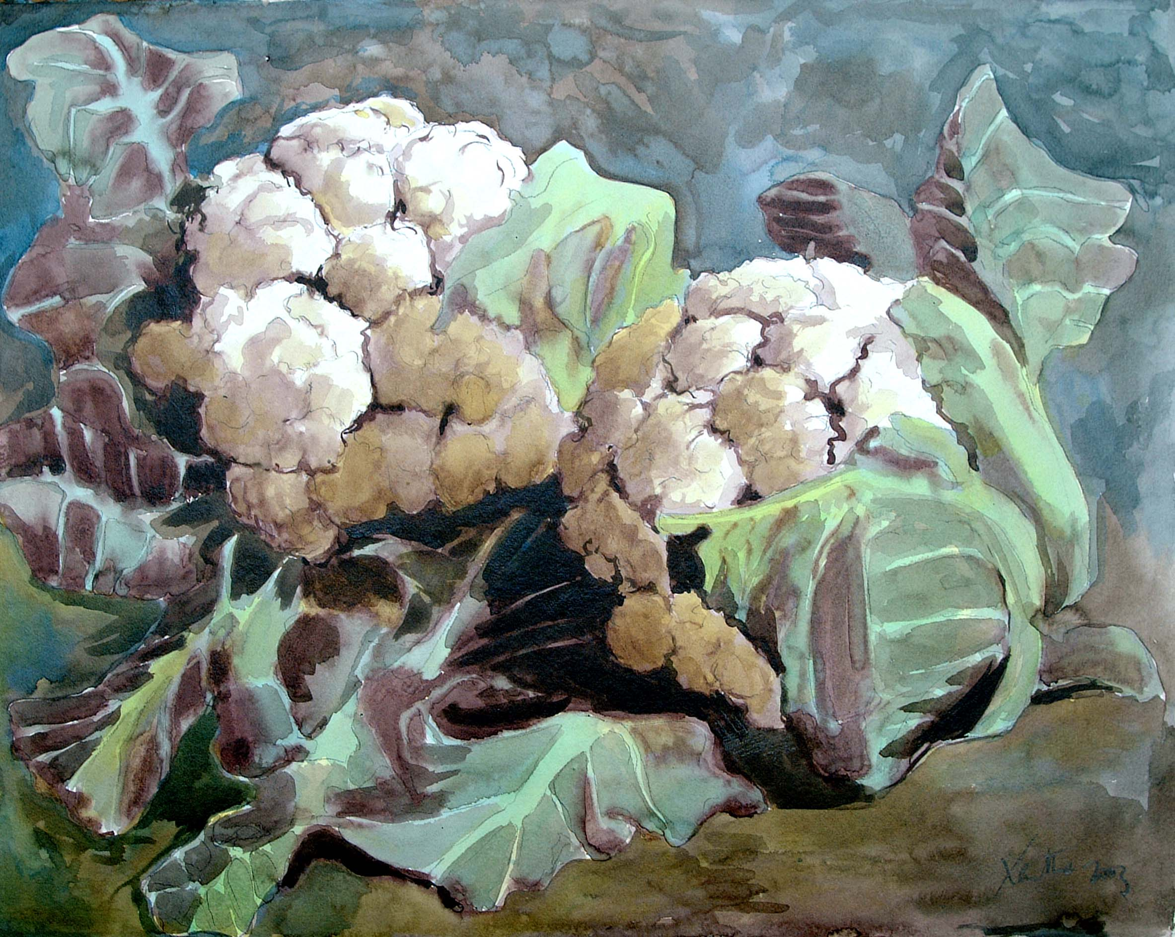 Two Cauliflowers