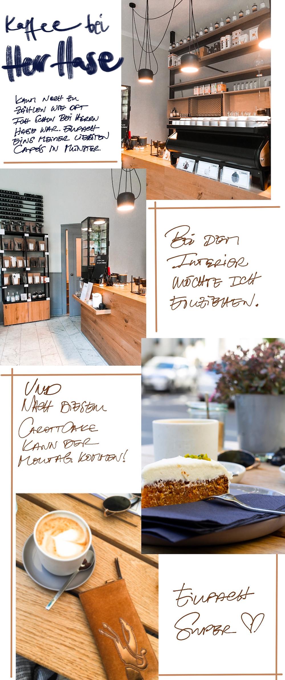 Zu Besuch bei Herrn Hase im Café in der Gertrudenstraße in Münster