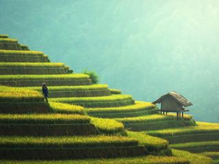 ¿Qué diferencia hay entre turismo responsable y turismo sostenible?
