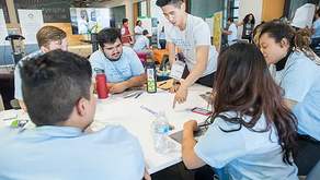 THE MILLENNIUM FELLOWSHIP FOR UNDERGRADUATE STUDENTS