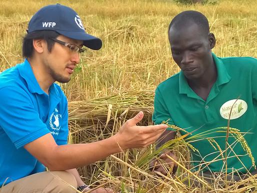 The United Nations World Food Programme (UN-WFP) Graduate Internship