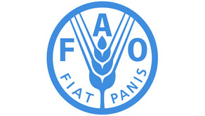 Call For Expression Of Interest – FAO Internship Programme
